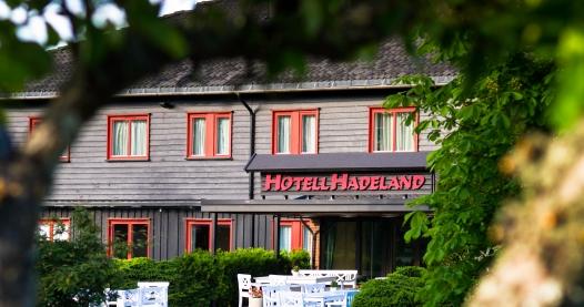 Hotellet sett fra parken